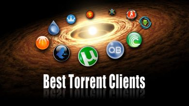 Top 10 Free Software Downloads from Torrent
